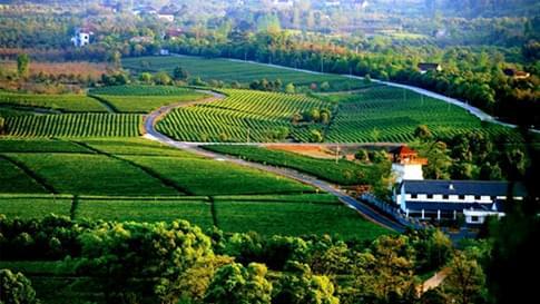 【惠州】现代农业观光乐园交联电力电缆采购项目