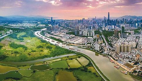 【深圳】深圳特别合作区赤河生态公园项目电线电缆采购项目